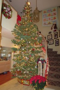 One huge live tree...last year's. Hubby and kids were in love.